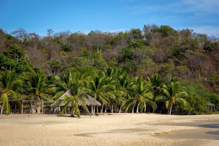 What Are the Beaches Like in Huatulco
