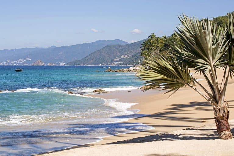 What Are the Beaches Like in Puerto Vallarta