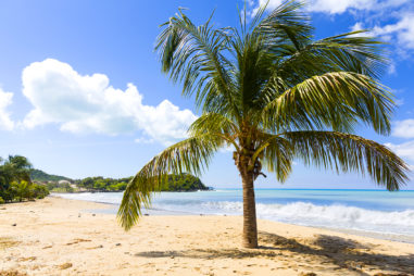 What Are the Beaches Like in Saint Martin