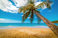 What Is the Best Time of Year to Visit Guadeloupe