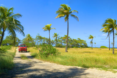 What Is the Best Way to Get Around In Barbados